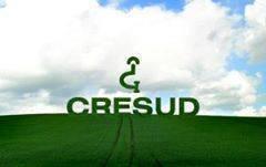 cresud 1